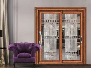 Fashionable Durable Aluminium Center Pivot Door/Middle Hung Pivot Door pictures & photos