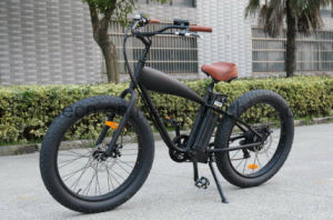 750W Fat Electric Retro Bicycle pictures & photos