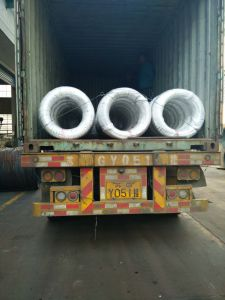 Steel Wire Swch22A Saip in Different Size pictures & photos
