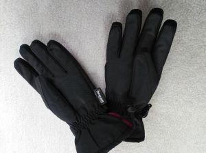 Adult Ski Glove/Adult Winter Glove/Winter Bike Glove/Moto Bike Glove/Detox Glove/Eco Finish Glove/Oekotex Glove/I-Touch Screen Glove/Waterproof Glove/Foil Glove pictures & photos