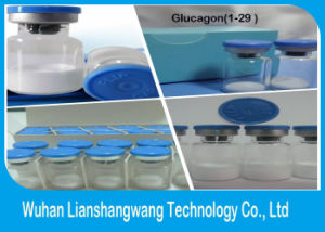 Glucagon (1-29) CAS 16941-32-5 for Promoting Insulin pictures & photos