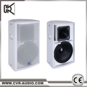 Cvr Public Adress Power Compact Theater Loudspeaker pictures & photos