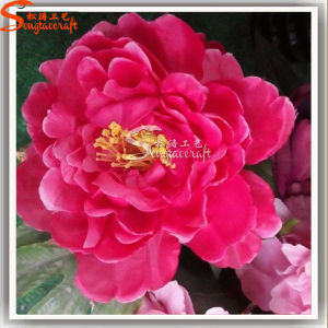 Chinese Flower Artificial Flowers Three-Head Peony pictures & photos