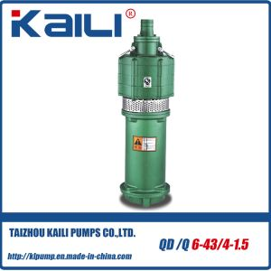 QD&Q Multistage Electric Submersible Water Pumps(with 4 impellers) pictures & photos