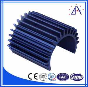 Mould Fee Free Designed Aluminum Extrusion Heatsin pictures & photos