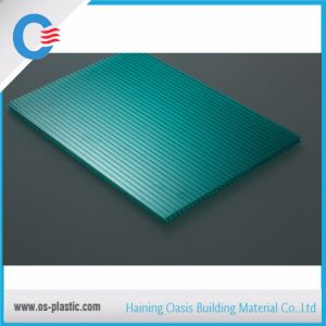 Glittering Polycarbonate Twin Wall Sheet pictures & photos