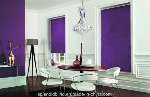 Roller Blinds Windows Wonderful Blinds Windows pictures & photos