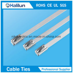 Good Quality 304 316 Material Heavy Duty Stainless Steel Zip Tie pictures & photos