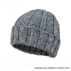 Beanie Hat Custom Knit Hat POM POM Knitted Hat Beanie pictures & photos