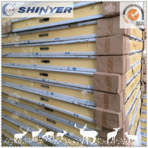 Shinyer Cold Room Panel Since 1982 pictures & photos