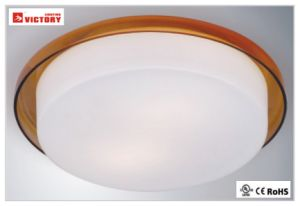 Modern Surface Round LED Ceiling Lamp with High Quality for Living Room pictures & photos