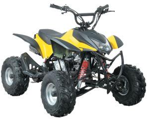 4 Wheel ATV Quad Bike 110cc Made in China pictures & photos
