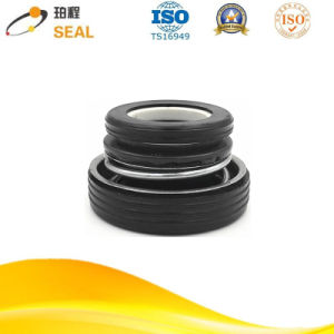 Pump Spring Mechanical Seal pictures & photos