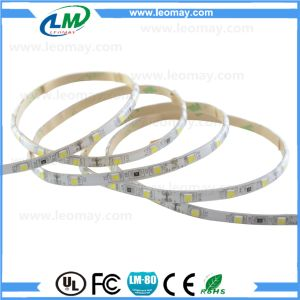 60LEDs/m Strip flessibile adesiva/ Tira LED/ Single Color LED Strip Light pictures & photos