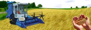 Rubber Tracks for Liulin Combined Harvester pictures & photos