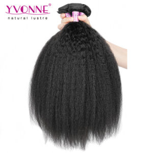 Best Quality Kinky Straight Brazilian Virgin Human Hair Extension pictures & photos