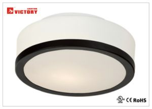 Waterproof Modern High Quality LED Ceiling Light Lamp with Ce pictures & photos