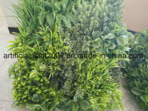 Artificial Grass Plants Wall for Covering Decoration pictures & photos