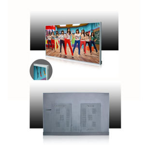 55 Inch Network Version and IR Remote Controller Digital Digital Signage/LCD Advertising Display pictures & photos