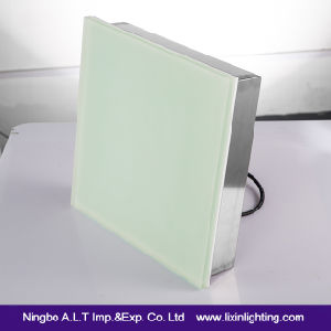 800*800*RGB Glass LED Tile Brick Floor Light with Ce/RoHS/EMC Approval pictures & photos