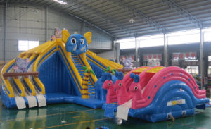 0.9mm PVC Tarpaulin Inflatable Water Slide (HL-006) pictures & photos