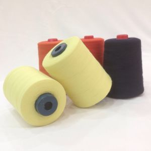 Filament and Spun Yarn Aramid Yarn for Industry pictures & photos