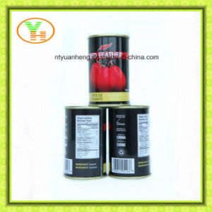 Tomato Paste 28 30 and Double Concentrated Tomato Puree pictures & photos