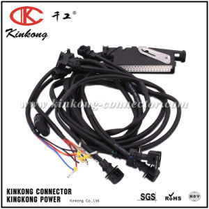 PCB Header Automotive Motor Engine Wire Harness pictures & photos
