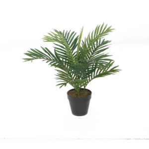Artificial Mini Palm Plant Tree pictures & photos