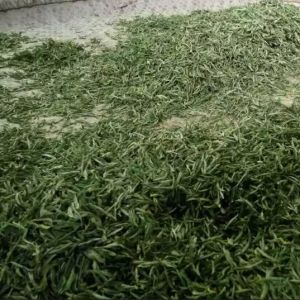 China Green Tea with EU Standard pictures & photos