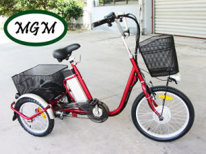 20′ Three Wheels Electric Bike for Cargos pictures & photos