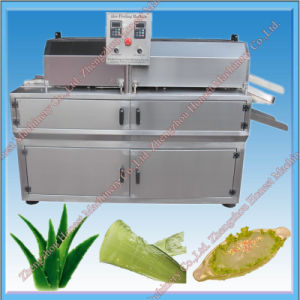 Aloe Vera Dicer Slicer Machine From China Supplier pictures & photos
