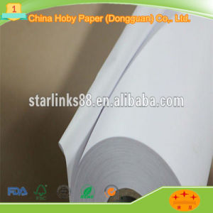 Best Price 100% Virgin Plain Plotter Paper Roll pictures & photos