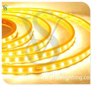 110V/220V LED Rope Light for Store Decor pictures & photos