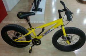 "Rear 6 Speed Youngster Mountain Bike 20"" Fat Bike (FP-MTB-FAT05) pictures & photos"