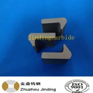 Tungsten Carbide Armour for Tamping Tine pictures & photos