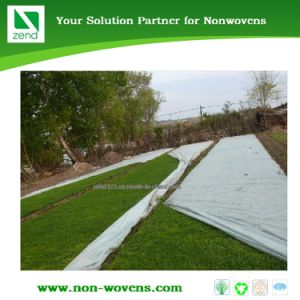 Agryl 17 UV Non-Wovens Fabric for Agriculture pictures & photos