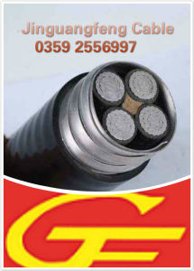 Yjlhvs2 Low Voltage Self-Locked Armored Aluminum Alloy Cable, XLPE/PVC pictures & photos