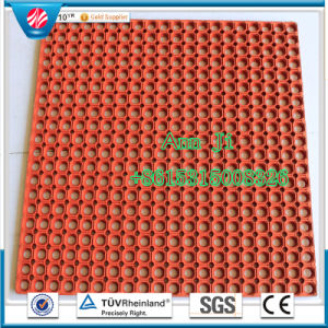 High Quality Drainage Rubber Ring Mat, 12mm Thick pictures & photos