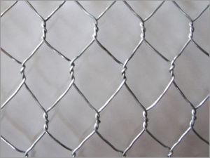 Hexagonal Wire Mesh/Anping Hexagonal Mesh pictures & photos
