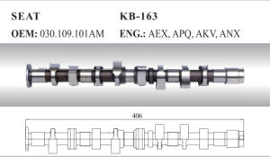 Auto Camshaft for Seat and VW (030.109.101am) pictures & photos