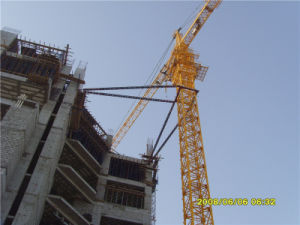Type of Crane Made in China by Hstowercrane pictures & photos