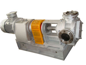 Nyp High Viscosity Internal Gear Oil Pump pictures & photos