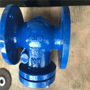 Swing Check Valve pictures & photos