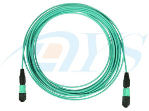 40G OM3 MPO- MTP Fiber Optic Patch Cord pictures & photos