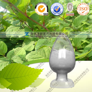 Resveratrol 98% Good Quality From China Manufacturer pictures & photos