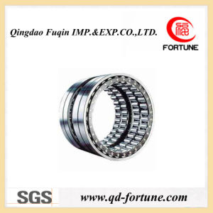 Long Riveted Cylindrical Roller Bearing pictures & photos