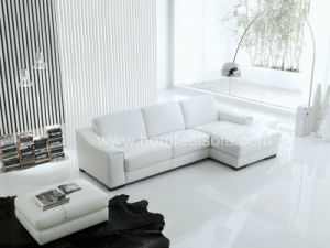 Modern Indoor Furniture Sectional Sofa (S117)