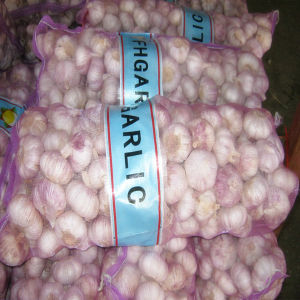2016 New Crop Fresh Garlic with Market Price in China pictures & photos