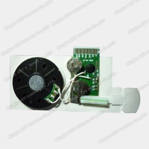 Empty Sound Module, Programmable Sound Chip (S-3013B) pictures & photos